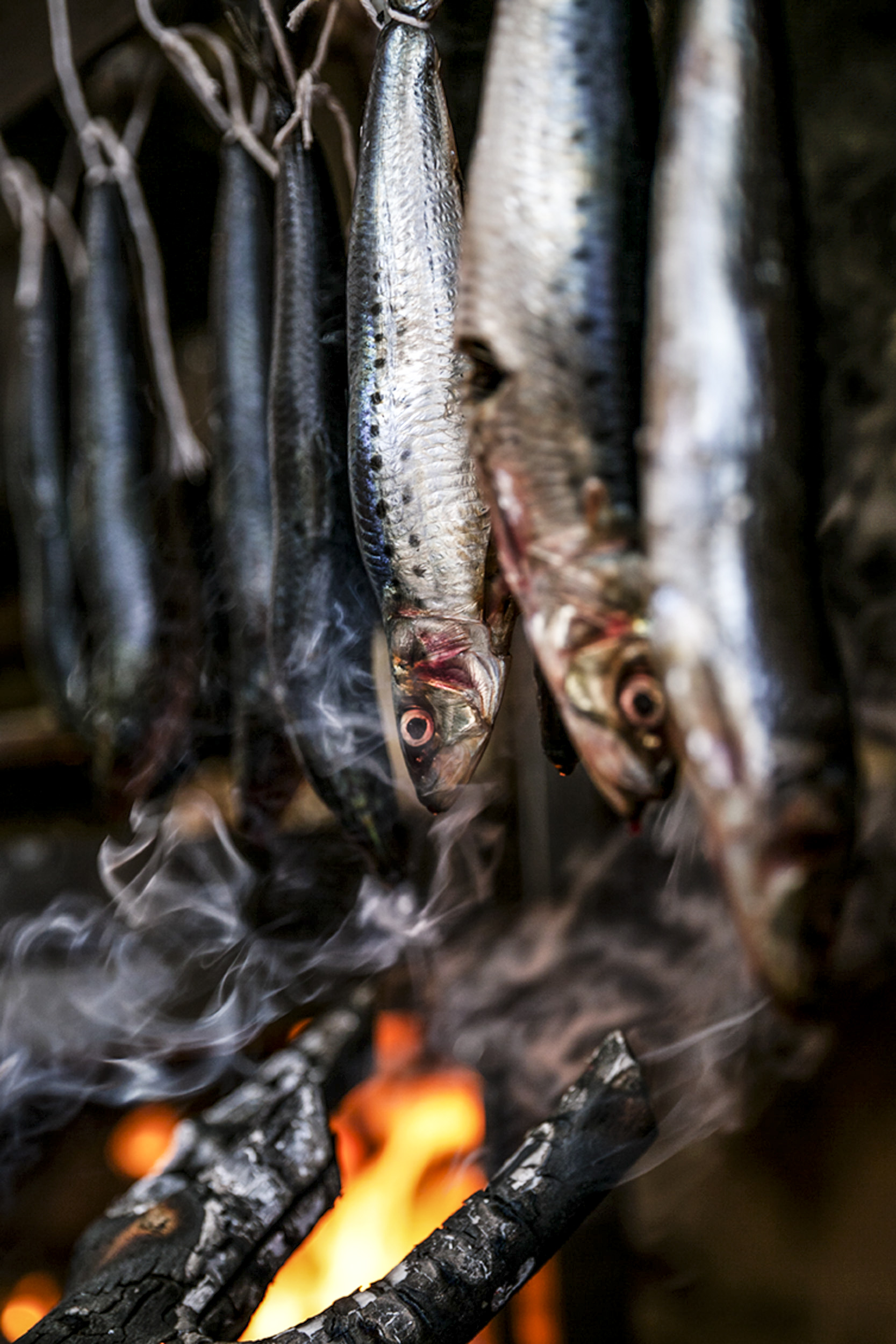 Katie Newburn | San Francisco Bay Area Food and Lifestyle Photographer | Smoking Fish