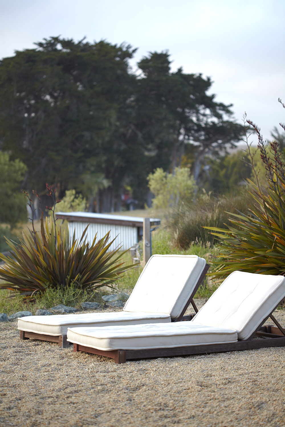 Katie Newburn | San Francisco Bay Area Food and Lifestyle Photographer | Backyard Lounge Chairs